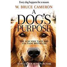 A Dog's Purpose 1
